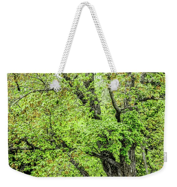 Spring Time By The River Weekender Tote Bag