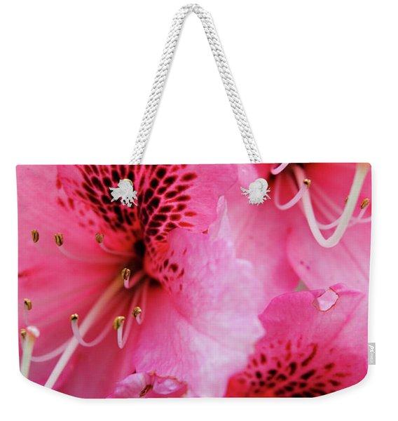 Springtime Azalea Weekender Tote Bag
