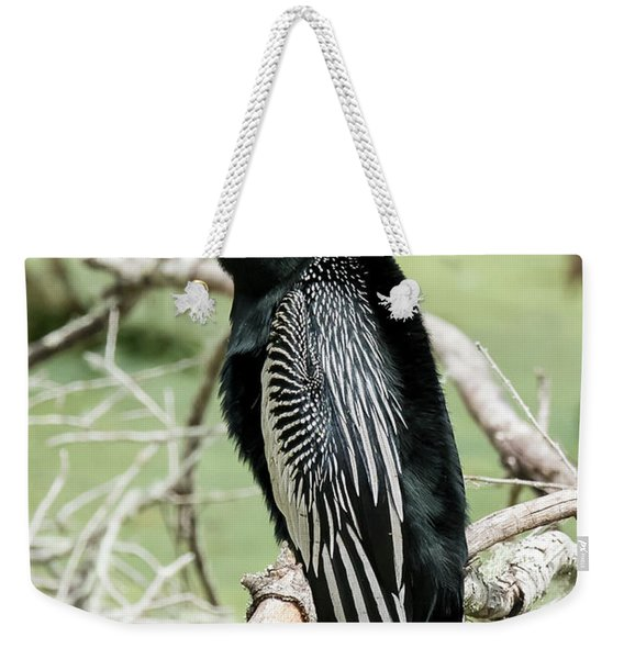 Squawking Anhinga Weekender Tote Bag