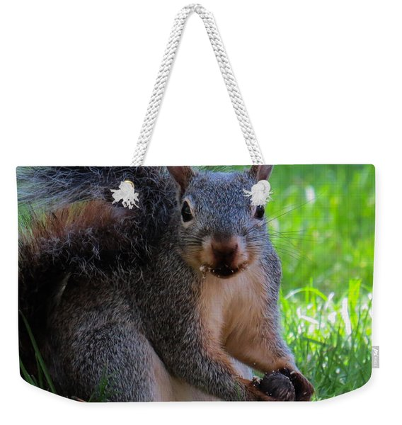 Squirrel 2 Weekender Tote Bag