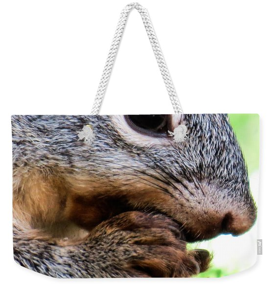 Squirrel 3 Weekender Tote Bag