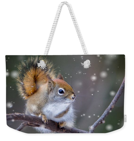 Squirrel Balancing Act Weekender Tote Bag