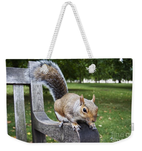 Squirrel Bench Weekender Tote Bag