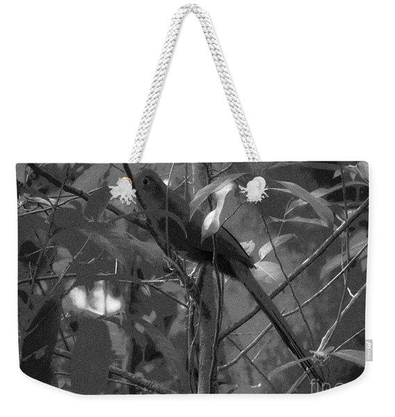 Squirrel Cuckoo  Weekender Tote Bag