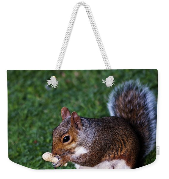 Squirrel Eating Weekender Tote Bag