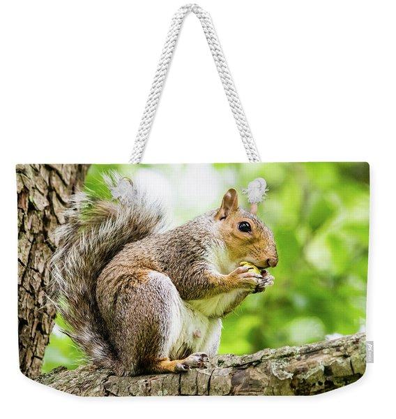 Squirrel Eating On A Branch Weekender Tote Bag