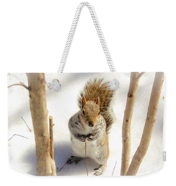 Squirrel In Snow Weekender Tote Bag