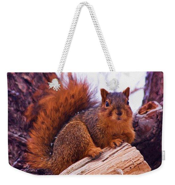 Squirrel In Tree Weekender Tote Bag