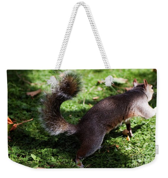 Squirrel Running Weekender Tote Bag