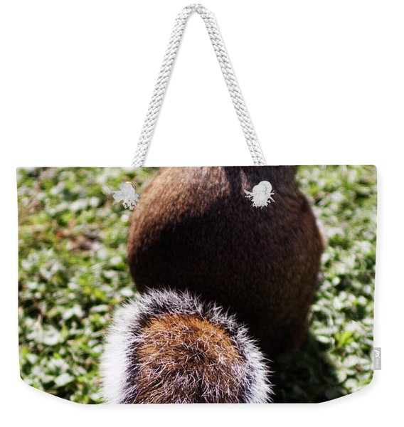 Squirrel S Back Weekender Tote Bag