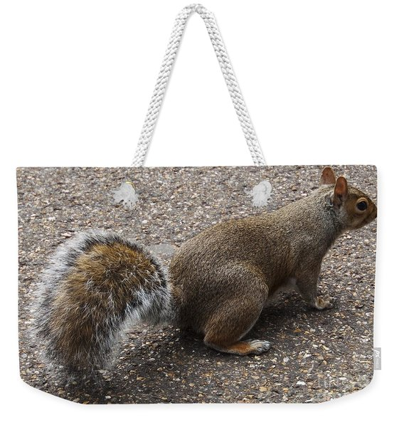 Squirrel Side Weekender Tote Bag