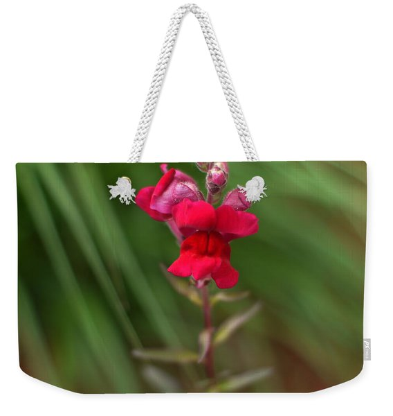 St. Johns Park Flower 872 Weekender Tote Bag