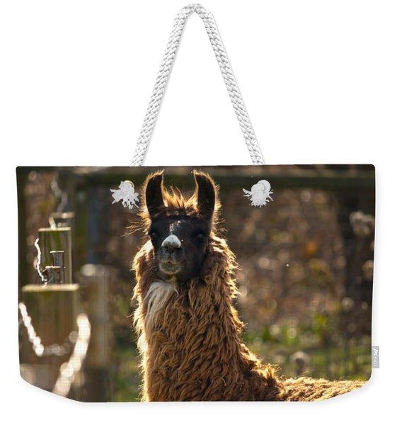 Staring Llama Weekender Tote Bag
