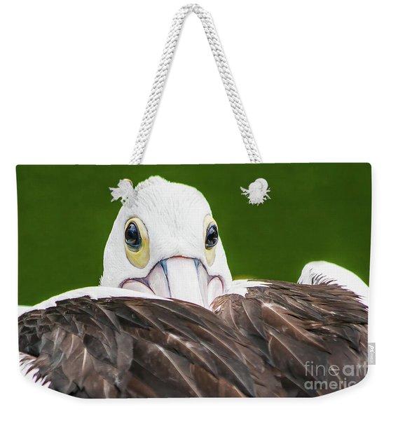 Staring Pelican Weekender Tote Bag