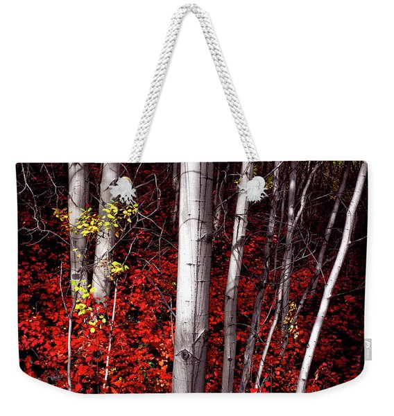 Stealing Beauty Weekender Tote Bag