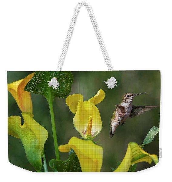 Stem To Sky A Hummingbird Flies Weekender Tote Bag