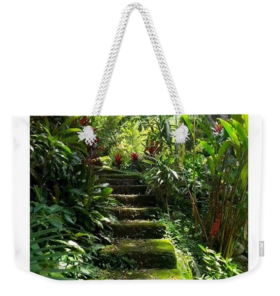 Steps Without Feet  From Weekender Tote Bag