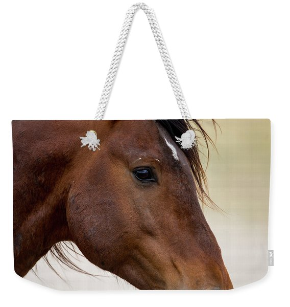 Eye To The Soul Weekender Tote Bag