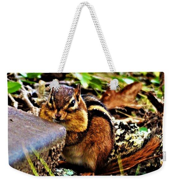 Storing For Winter Weekender Tote Bag