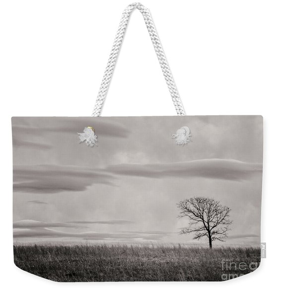 Storm Approaches Tree Weekender Tote Bag