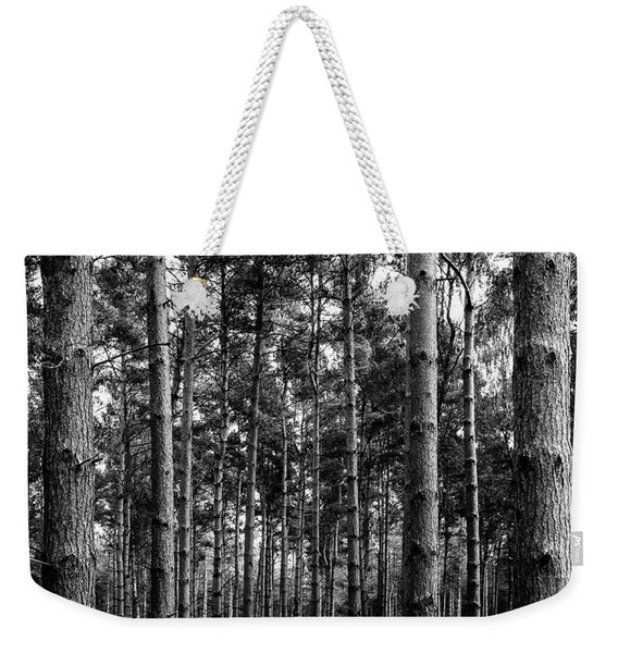 Weekender Tote Bag featuring the photograph Straight Up by Nick Bywater