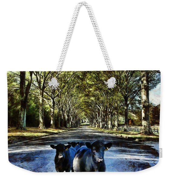 Street Cows Weekender Tote Bag