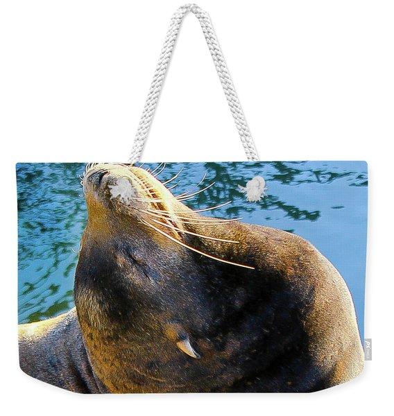 Stretch Weekender Tote Bag