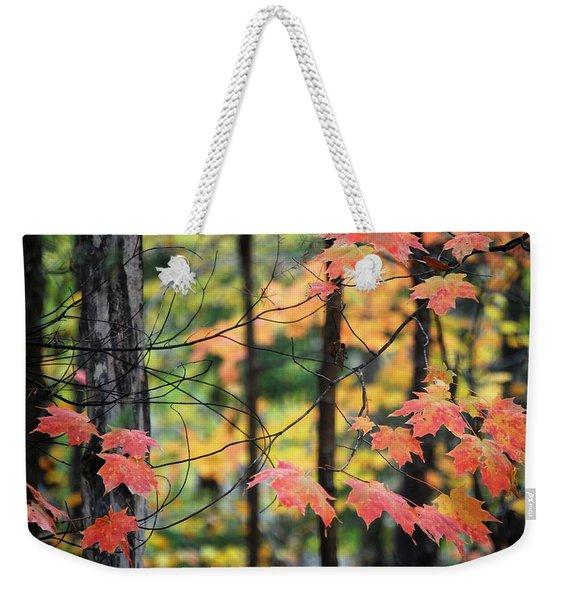 Stringing Up The Colors Weekender Tote Bag