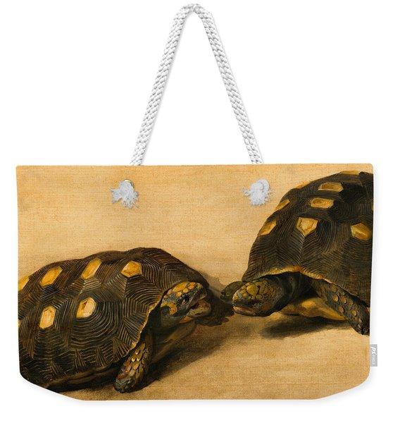 Study Of Two Brazilian Tortoises Weekender Tote Bag