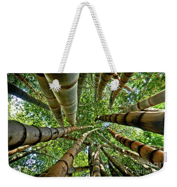 Stunning Bamboo Forest - Color Weekender Tote Bag