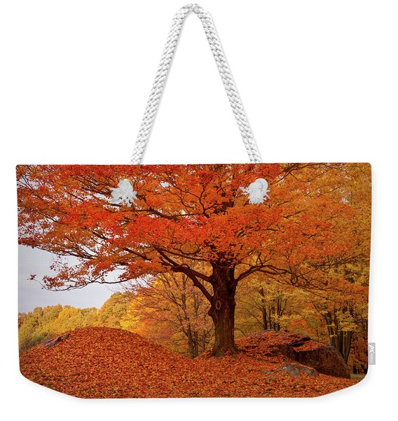 Sturdy Maple In Autumn Orange Weekender Tote Bag