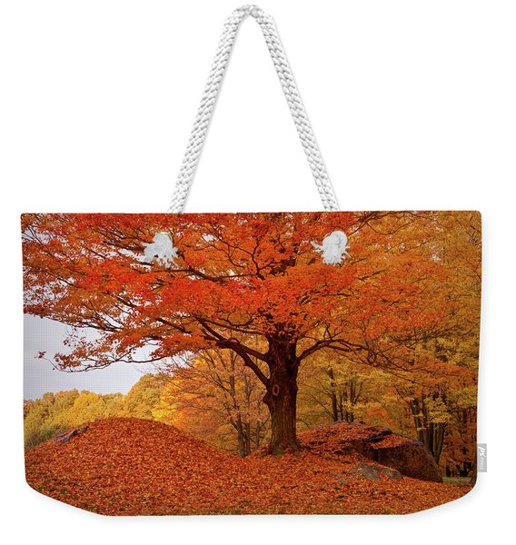 Weekender Tote Bag featuring the photograph Sturdy Maple In Autumn Orange by Jeff Folger