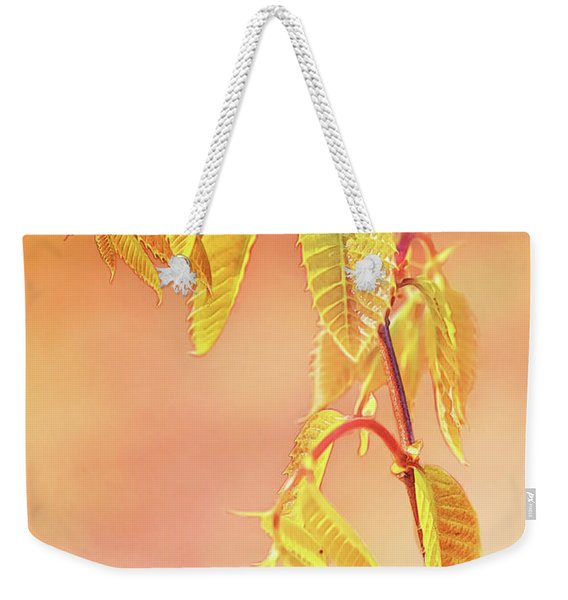Stylized Baby Chestnut Leaves Weekender Tote Bag