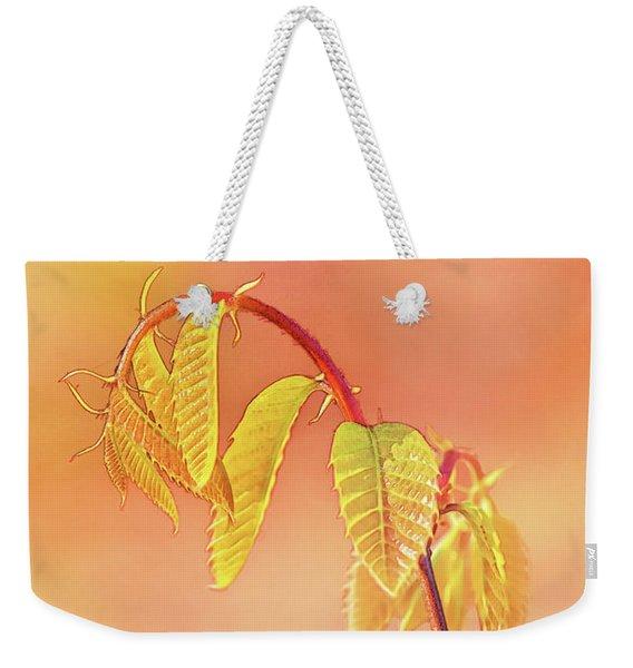 Stylized Baby Chestnut Leaves Weekender Tote Bag