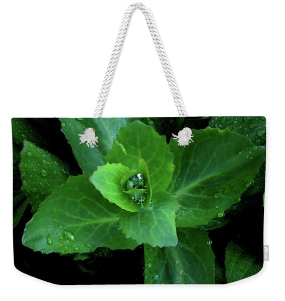 Succulent After The Rain  Weekender Tote Bag