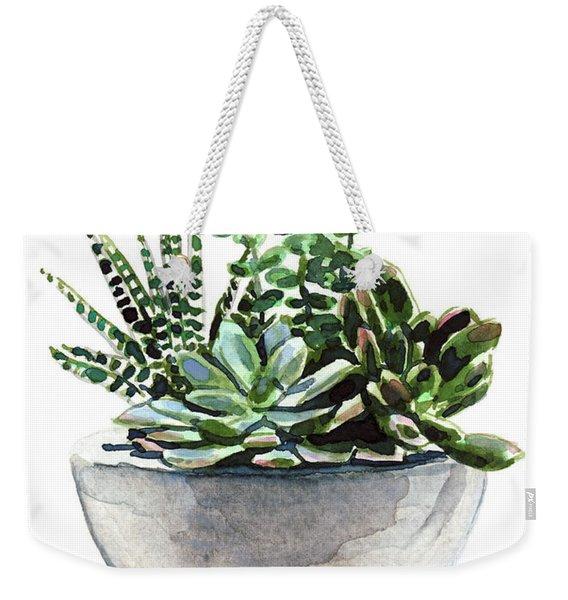Succulent Arrangement In Modern Planter Weekender Tote Bag