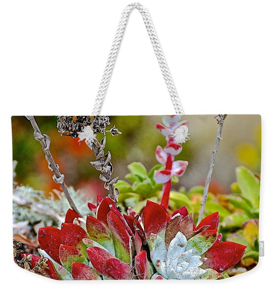 Succulents In Point Lobos State Reserve Near Monterey-california  Weekender Tote Bag