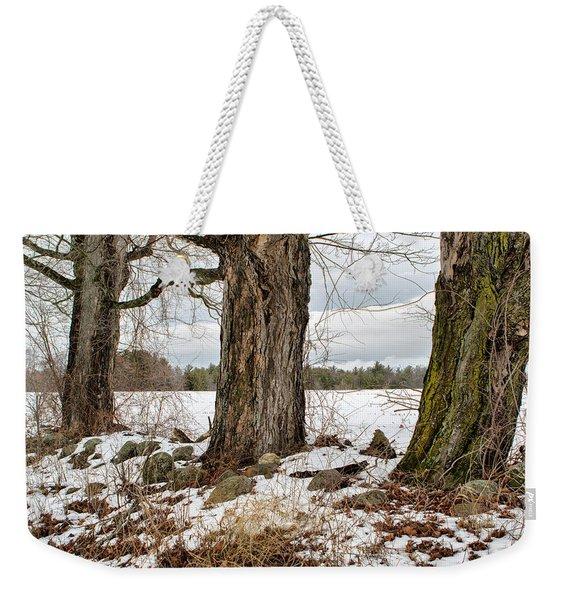 Sugar Maples  Weekender Tote Bag
