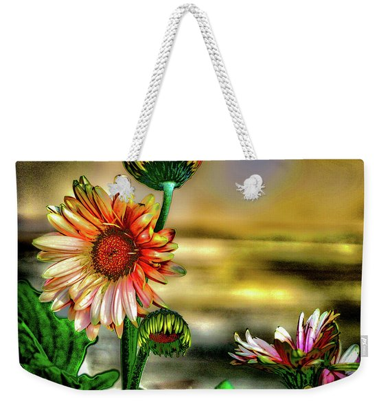 Weekender Tote Bag featuring the photograph Summer Daisy by William Norton