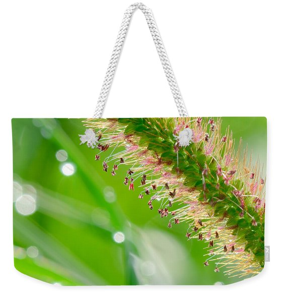 Summer Grass Weekender Tote Bag