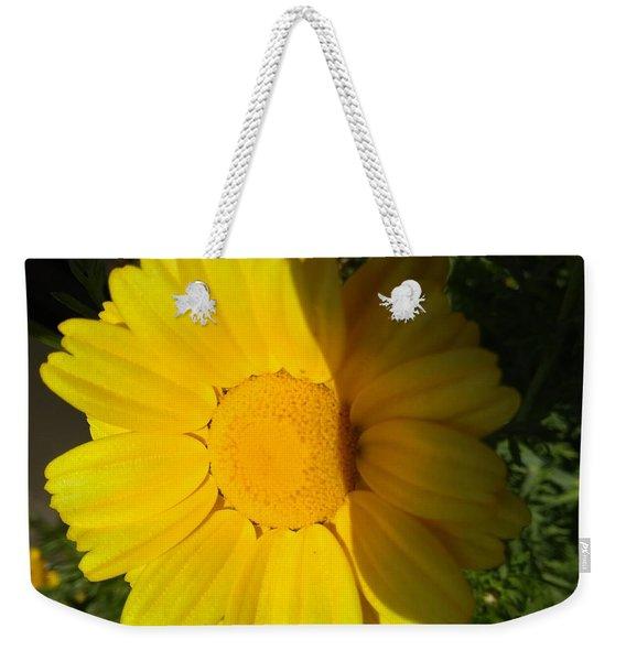 Sun And Shine Weekender Tote Bag