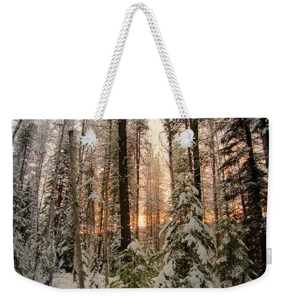 Sun Of Winter Trees Weekender Tote Bag