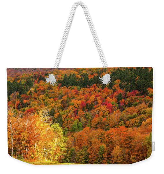 Weekender Tote Bag featuring the photograph Sun Peeking Through by Jeff Folger