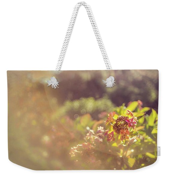 Sunbathe Morning Weekender Tote Bag