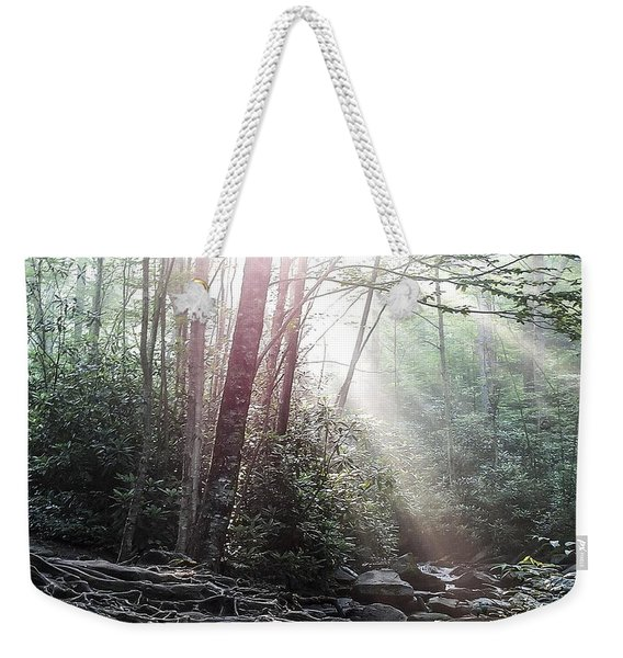 Sunbeam Streaming Into The Forest Weekender Tote Bag