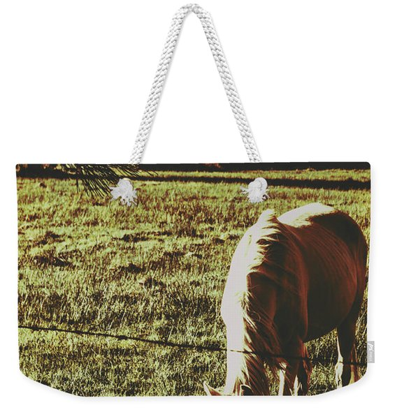 Sundown Horse Meadow Weekender Tote Bag