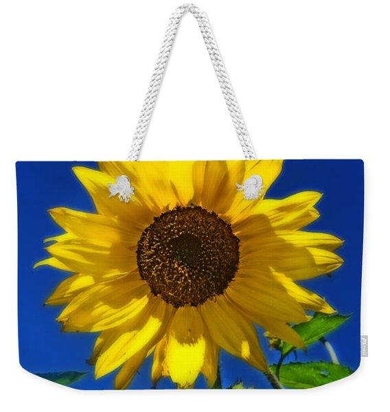 Maize 'n Blue Weekender Tote Bag