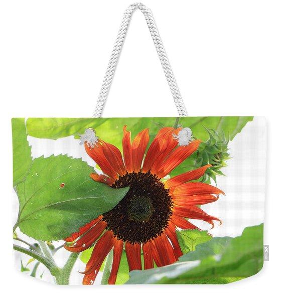 Sunflower In The Afternoon Weekender Tote Bag