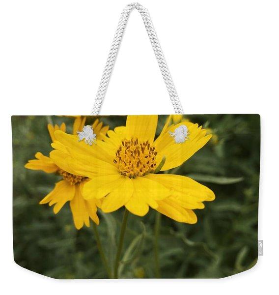 Sunflower Sanctuary  Weekender Tote Bag