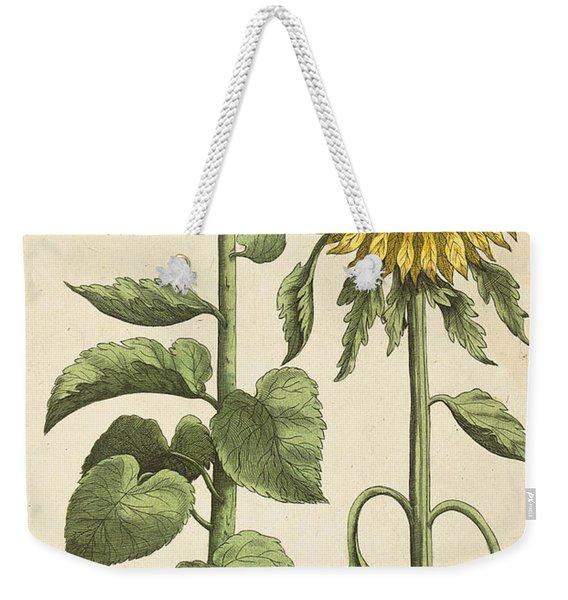 Sunflowers Illustration From Florilegium Weekender Tote Bag